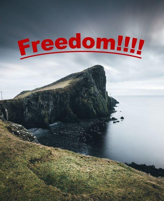 "Freedom in ""FI"""